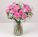 Candy Pink Roses