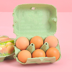 Free Range Eggs 6 pack