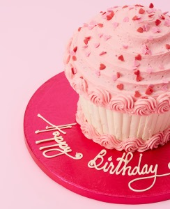 Pleasant Birthday Cakes For Girls Order Online Enjoy Home Delivery Funny Birthday Cards Online Eattedamsfinfo